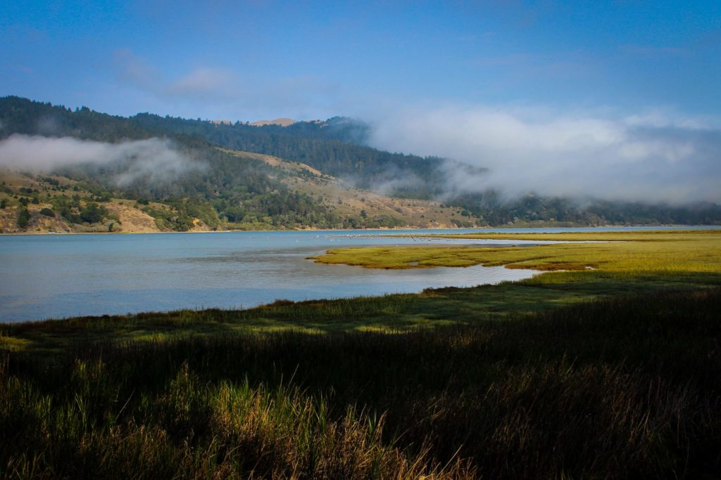 Resource Renewal Institute - Pt. Reyes National Seashore
